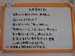 IMG_3441